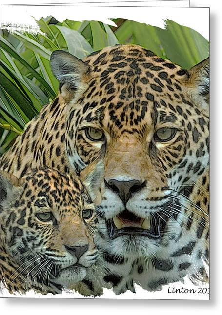 Jaguars Greeting Cards - Jaguar Mother And Cub Greeting Card by Larry Linton