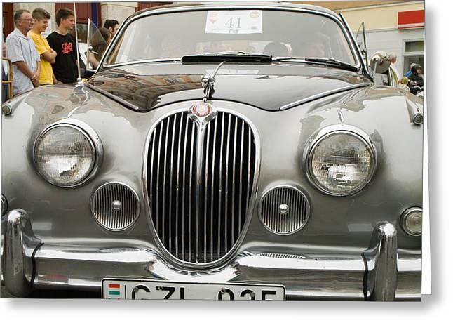Gran Jaguar Greeting Cards - Jaguar Greeting Card by Odon Czintos