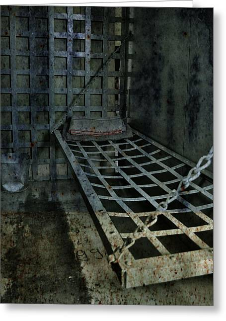 Nyc Posters Photographs Greeting Cards - Jailbird Cage  Greeting Card by Jerry Cordeiro