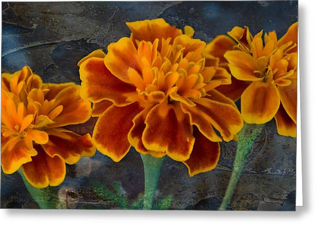 Janet's Marigolds Greeting Card by Lisa Moore