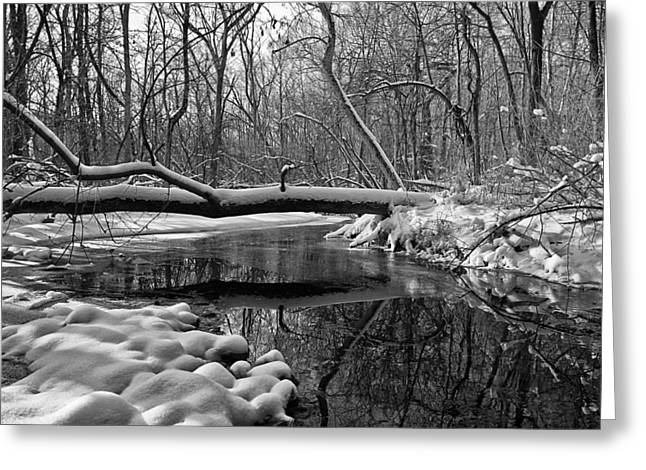 40mm Greeting Cards - January Stream Greeting Card by CJ Schmit