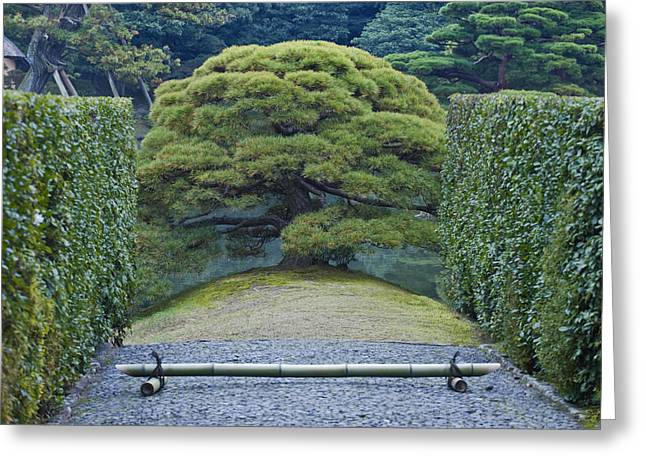 Kyoto Greeting Cards - Japan Kyoto Katsura Imperial Villa Greeting Card by Rob Tilley