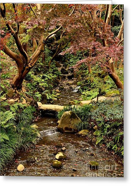 Changing Colour Greeting Cards - Japanese Garden in Autumn 4 Greeting Card by Dean Harte
