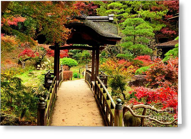 Changing Colour Greeting Cards - Japanese Garden in Autumn 7 Greeting Card by Dean Harte