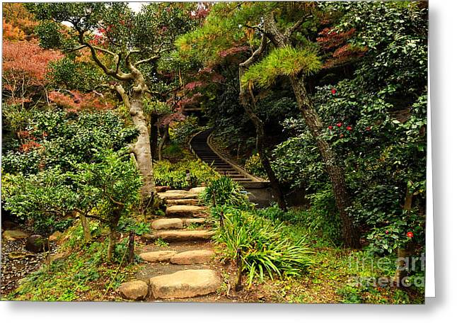Changing Colour Greeting Cards - Japanese Garden in Autumn 8 Greeting Card by Dean Harte