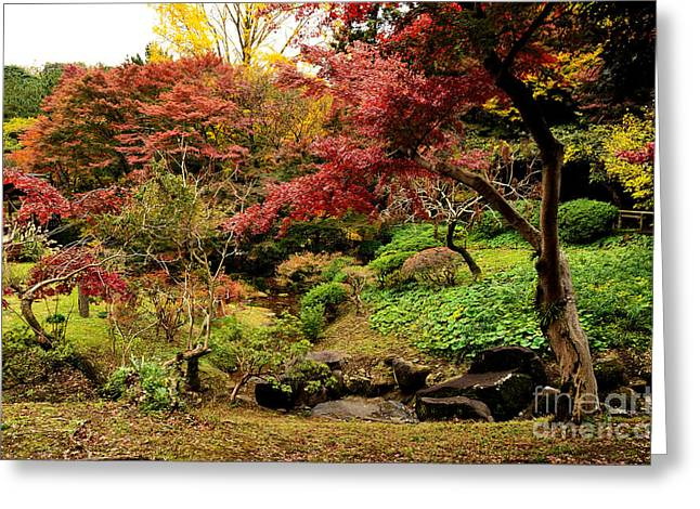 Changing Colour Greeting Cards - Japanese Garden in Autumn 9 Greeting Card by Dean Harte