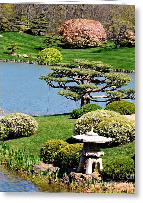 Chicago Botanic Garden Greeting Cards - Japanese Garden Greeting Card by Nancy Mueller