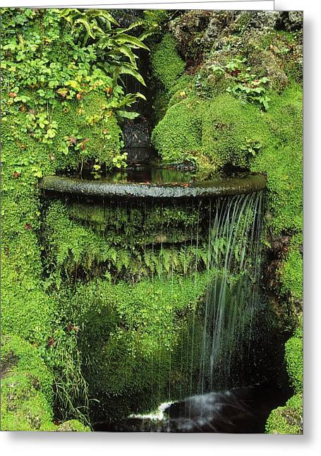 Flowing Fountain Greeting Cards - Japanese Garden, Powerscourt Gardens Greeting Card by The Irish Image Collection