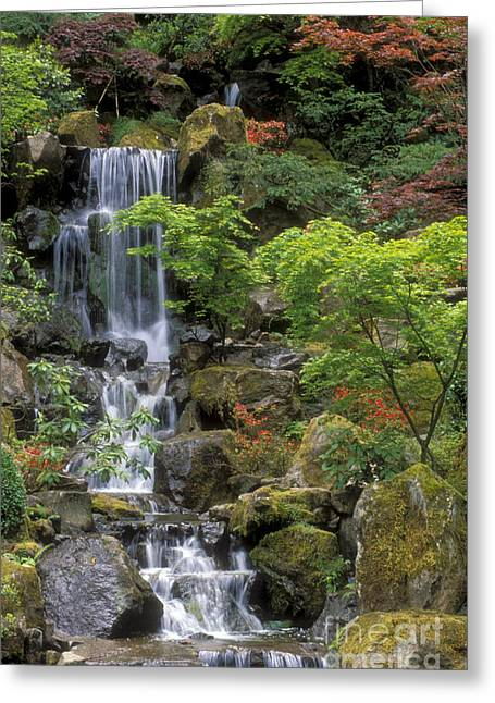 Color Green Greeting Cards - Japanese Garden Waterfall Greeting Card by Sandra Bronstein