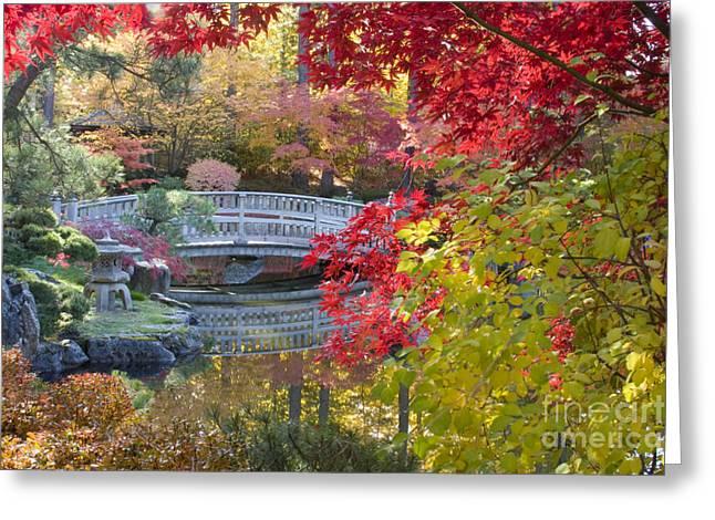 Japanese Garden Greeting Cards - Japanese Gardens Greeting Card by Idaho Scenic Images Linda Lantzy