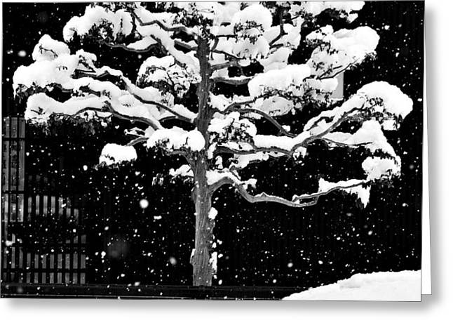Japanese Tree in the Snow Greeting Card by Dean Harte