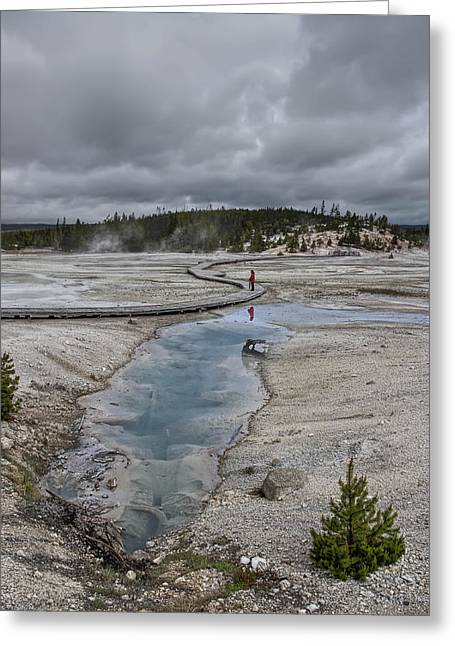 Super Volcano Greeting Cards - JAPANESE WOMAN with UMBRELLA at NORRIS GEYSER BASIN Greeting Card by Daniel Hagerman