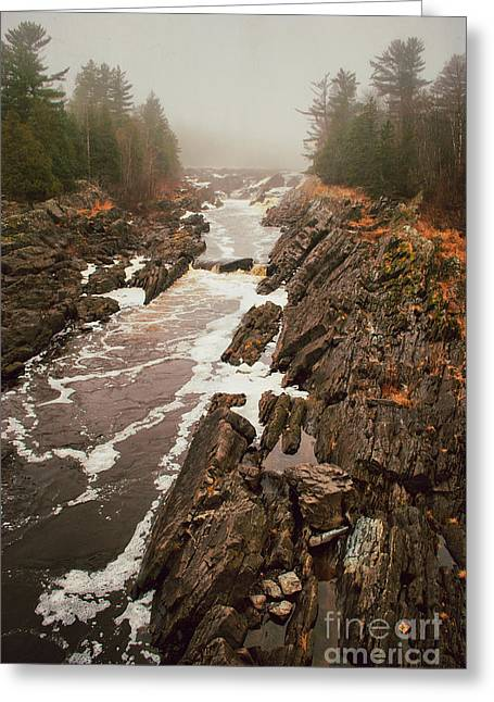 Cooke Greeting Cards - Jay Cooke Under Fog Greeting Card by Shutter Happens Photography