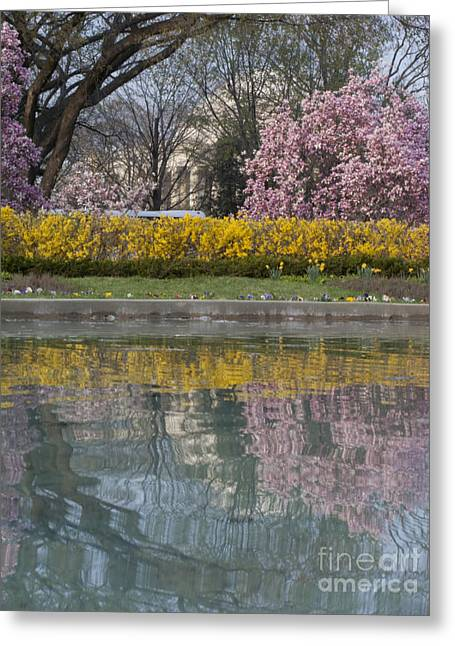 Jefferson Greeting Cards - Jefferson Memorial and a Reflecting Pond Greeting Card by Tim Grams