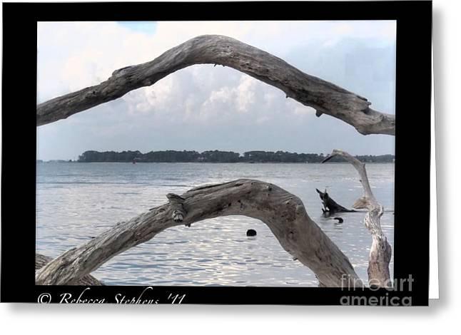 Brunswick Greeting Cards - Jekyll Island Driftwood Beach Greeting Card by Rebecca  Stephens