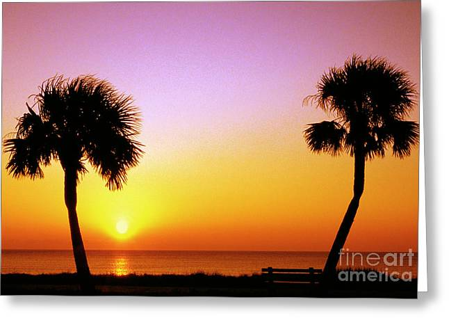 Cabbages Greeting Cards - Jekyll Island Sunrise Greeting Card by Thomas R Fletcher