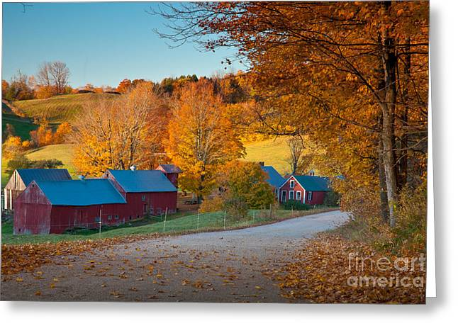 Vermont Village Greeting Cards - Jenne Farm Glow Greeting Card by Susan Cole Kelly
