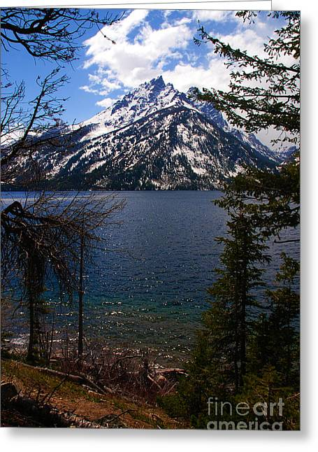 Blue Greeting Cards - Jenny Lake in the Grand Teton Area Greeting Card by Susanne Van Hulst