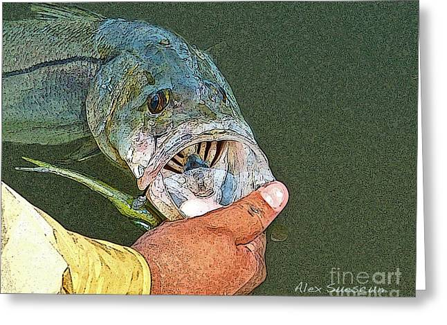 Tarpon Drawings Greeting Cards - Jerkbait Snook Greeting Card by Alex Suescun
