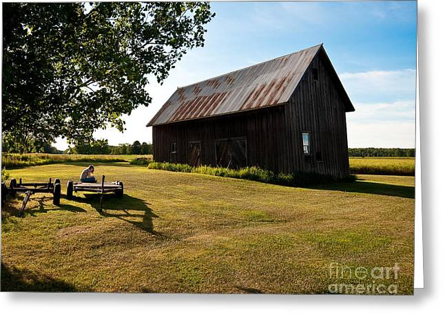 Barn Yard Greeting Cards - Jesses World Greeting Card by Steven Dunn