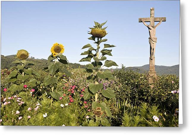 Calvary Greeting Cards - Jesus on the Cross Greeting Card by Luc Novovitch