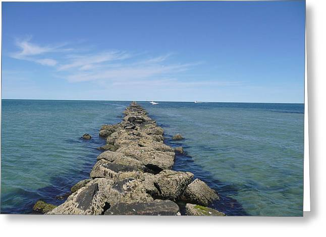 Becky Lodes Greeting Cards - Jetties Beach Nantucket Greeting Card by Becky Lodes