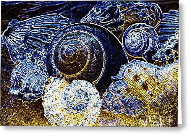 Carol F Austin Greeting Cards - Jewels From The Ocean  Greeting Card by Carol F Austin