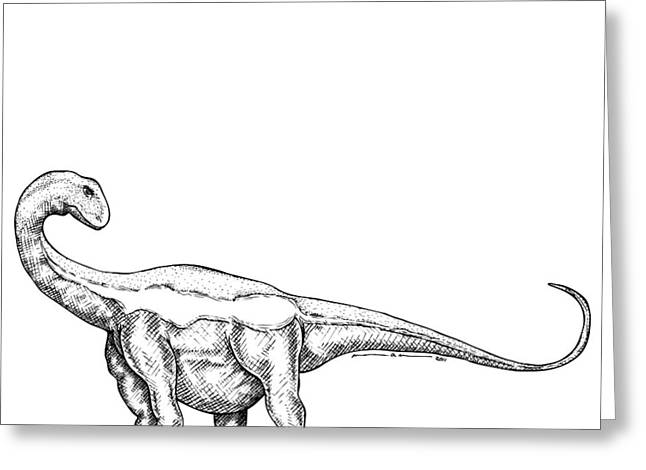 Jobaria - Dinosaur Greeting Card by Karl Addison