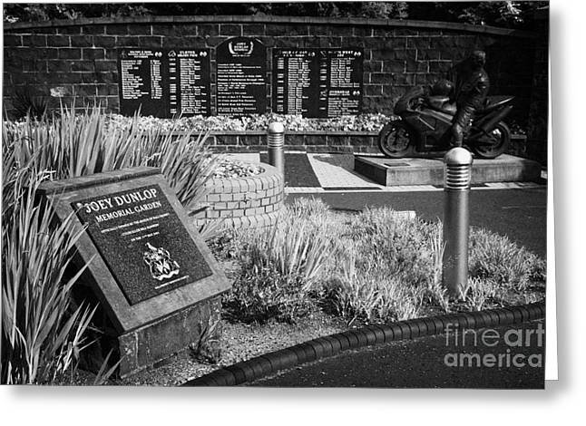 Ballymoney Greeting Cards - Joey Dunlop memorial garden in Ballymoney county antrim northern ireland Greeting Card by Joe Fox