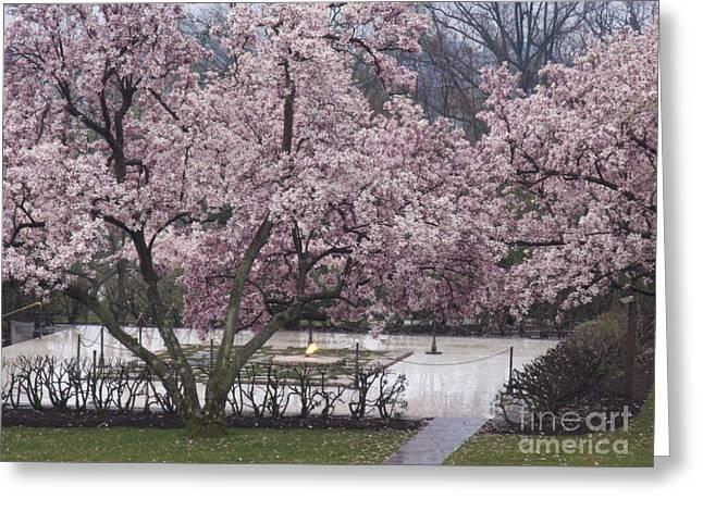 Eternal Flame Greeting Cards - John F Kennedy Memorial in Spring Greeting Card by Tim Grams