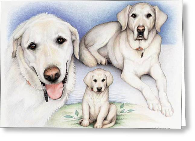 Puppies Drawings Greeting Cards - Johns Henry Greeting Card by Amy S Turner