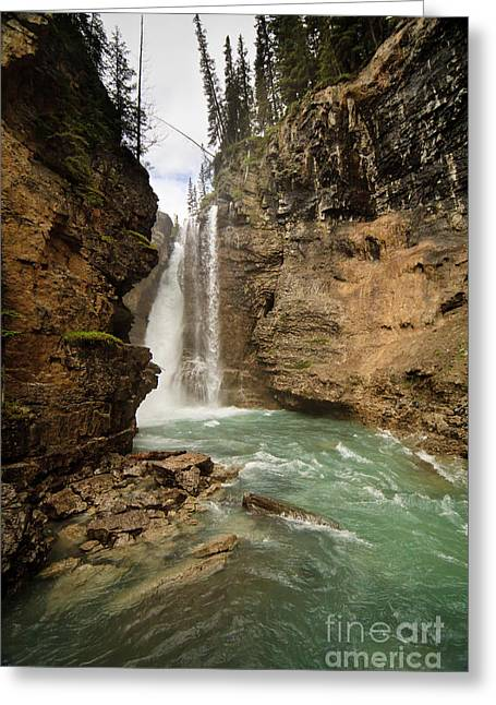 Johnston Greeting Cards - Johnston Canyon Falls Greeting Card by Dennis Hedberg