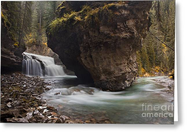Water In Creek Greeting Cards - Johnston Creek waterfall Greeting Card by Keith Kapple