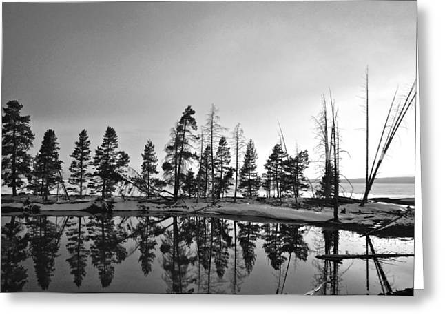 Neil Young Photographs Greeting Cards - Journey Through The Past Greeting Card by Andrew Finn