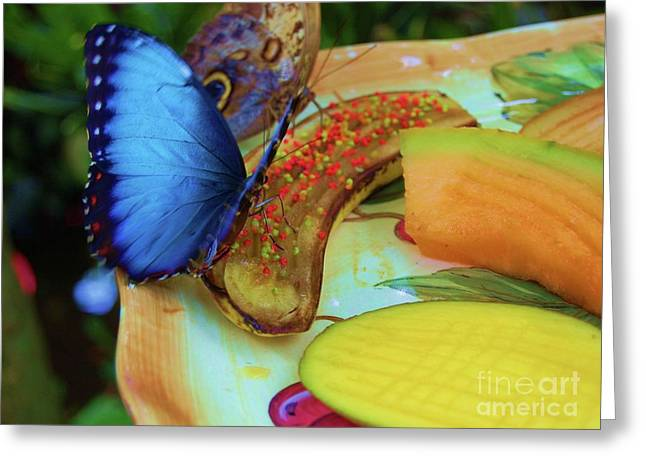 Cantaloupe Greeting Cards - Juicy Fruit Greeting Card by Debbi Granruth