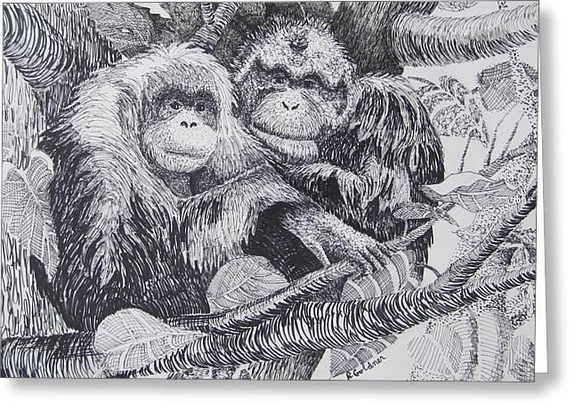 Orangutan Drawings Greeting Cards - Jungle Love Greeting Card by Rita Goldner