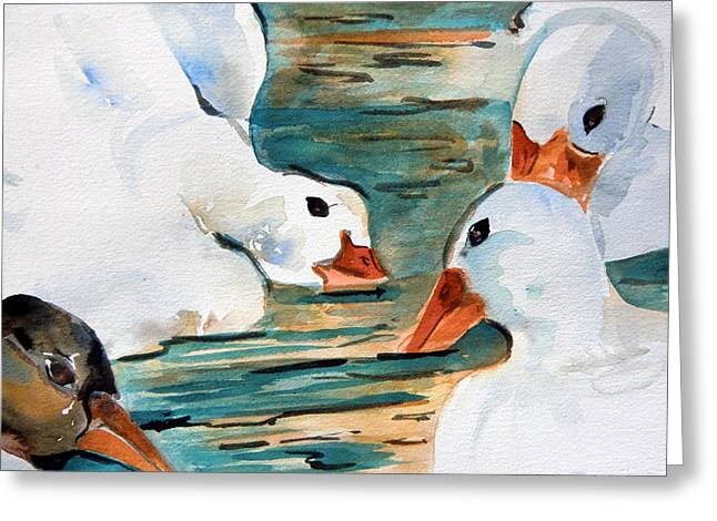 Geese Drawings Greeting Cards - Just Duckie Greeting Card by Mindy Newman