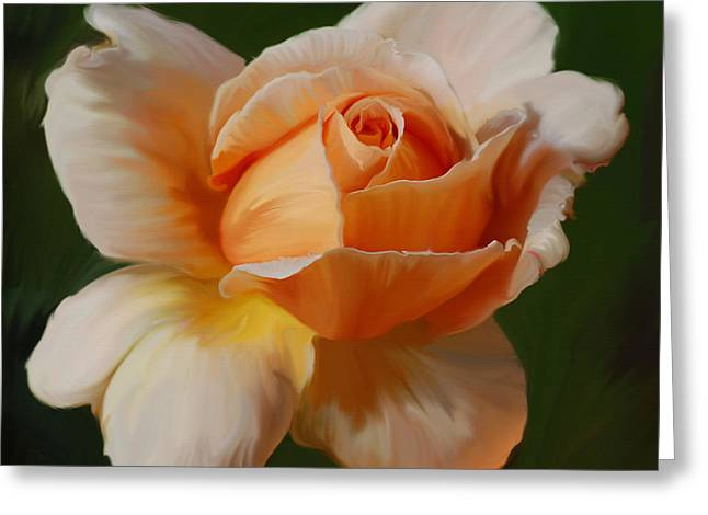 Apricot Greeting Cards - Just Joey Bloom Greeting Card by Diane E Berry