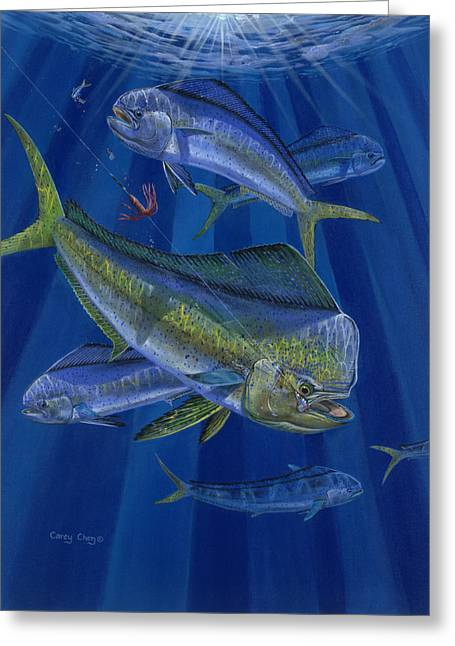 Striped Marlin Greeting Cards - Just Taken Greeting Card by Carey Chen