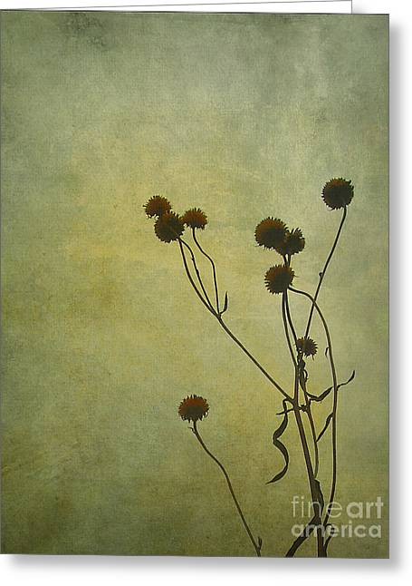 Judi Bagwell Greeting Cards - Just Weeds . . . Greeting Card by Judi Bagwell