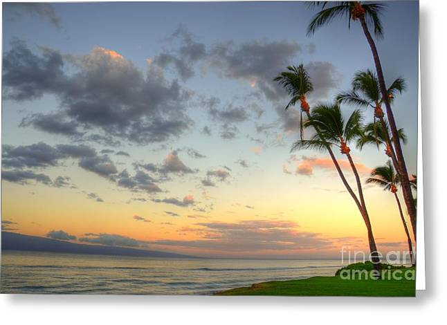 Lahaina Greeting Cards - Kaanapali Palm Sunrise Greeting Card by Kelly Wade