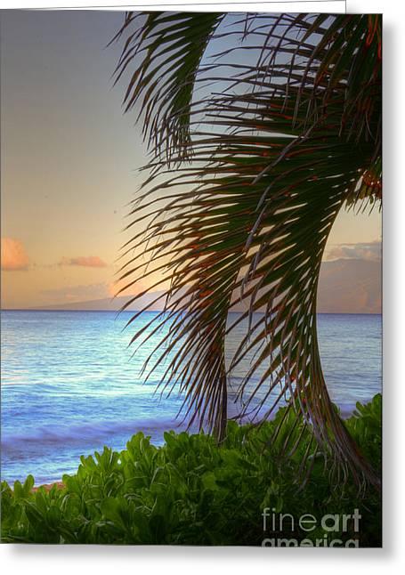 Lahaina Greeting Cards - Kaanapali Palms Sunrise Greeting Card by Kelly Wade