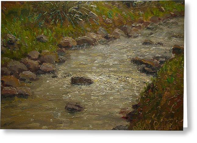 Terry Perham Paintings Greeting Cards - Kaikorai Stream After Rain Greeting Card by Terry Perham