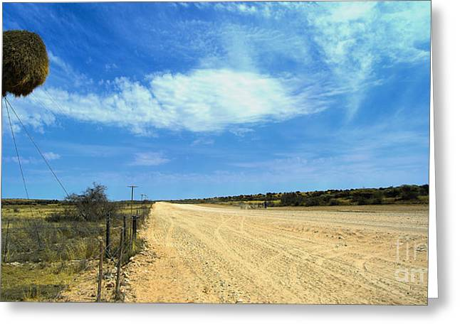 Framed Dog House Print Greeting Cards - Kalahari Highway Greeting Card by Jaco Kriek