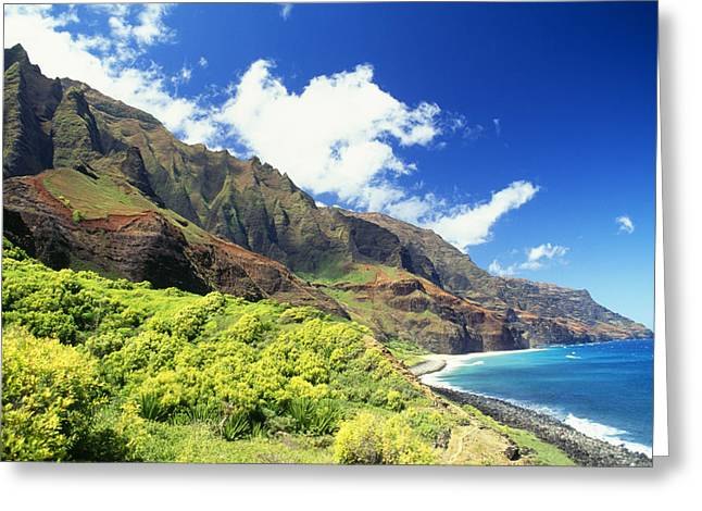 Peter French Greeting Cards - Kalalau, Secluded Beach Greeting Card by Peter French - Printscapes