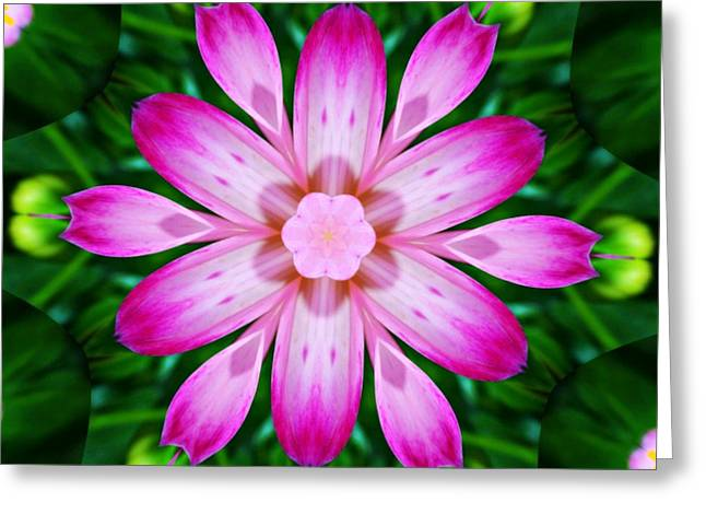 Kaleidoscope Effect Greeting Cards - Kaleidoscope of a Dahlia Greeting Card by Cathie Tyler
