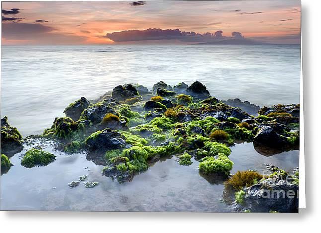 ; Maui Greeting Cards - Kamaole 3 Beach Tidal Pool Maui Greeting Card by Dustin K Ryan