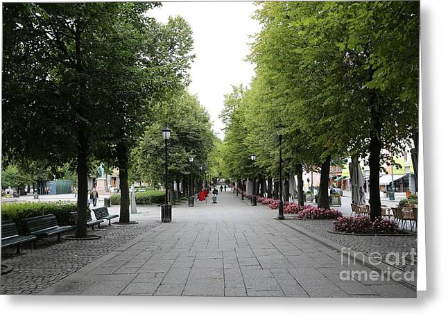 Karl Johans Gate Greeting Card by Carol Groenen