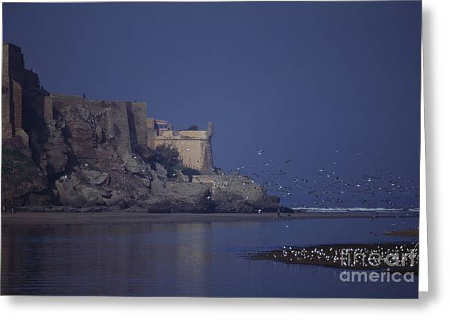 Rabat Photographs Greeting Cards - Rabat Bouregreg River Morocco Greeting Card by Antonio Martinho