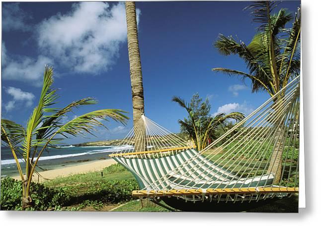 Hyatt Hotel Greeting Cards - Kauai Hammock Greeting Card by Mary Van de Ven - Printscapes